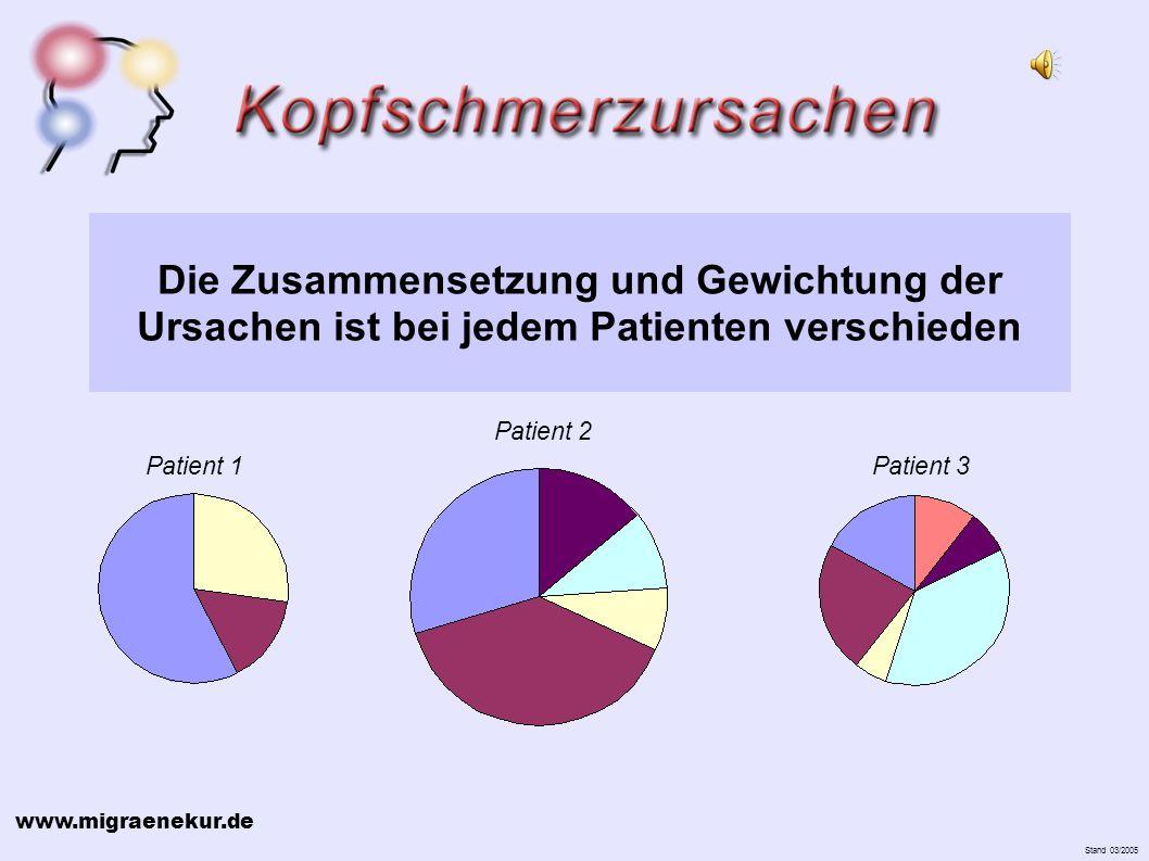 www.migraenekur.de Stand 03/2005 Die Zusammensetzung und Gewichtung der Ursachen ist bei jedem Patienten verschieden Patient 1 Patient 2 Patient 3