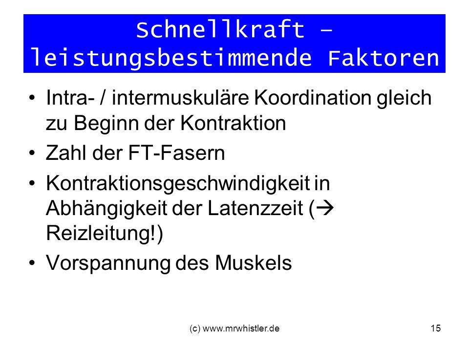 Schnellkraft – leistungsbestimmende Faktoren Intra- / intermuskuläre Koordination gleich zu Beginn der Kontraktion Zahl der FT-Fasern Kontraktionsgesc