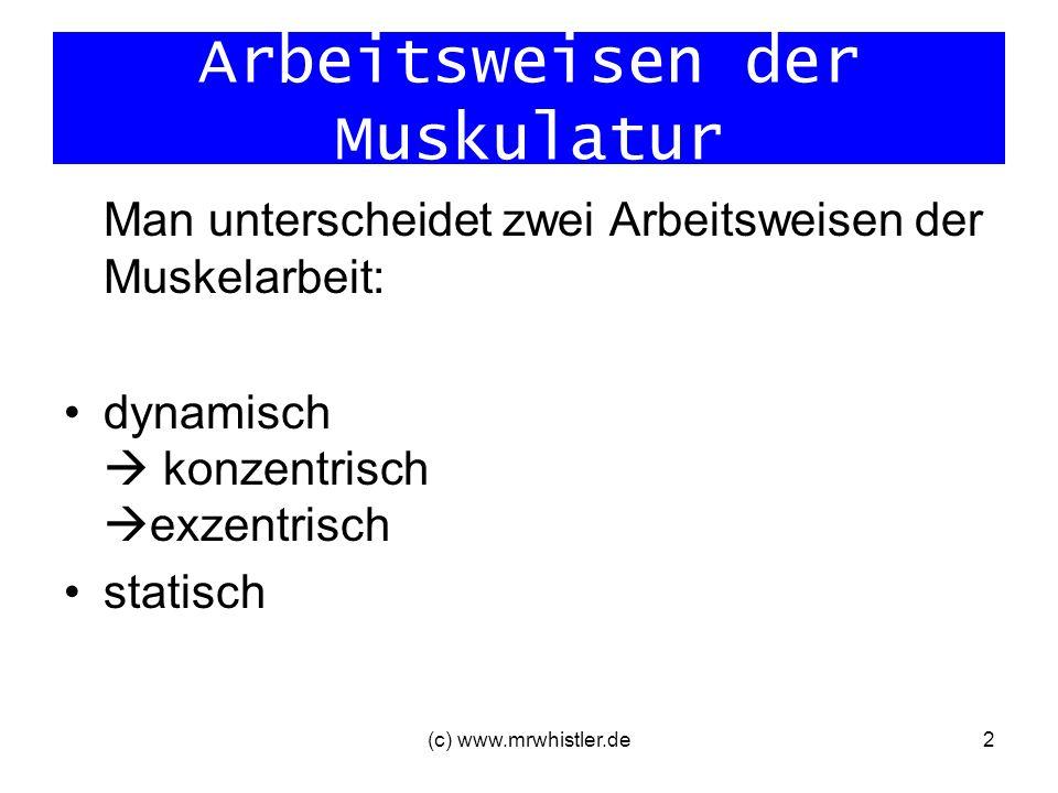 Arbeitsweisen der Muskulatur Man unterscheidet zwei Arbeitsweisen der Muskelarbeit: dynamisch konzentrisch exzentrisch statisch (c) www.mrwhistler.de2