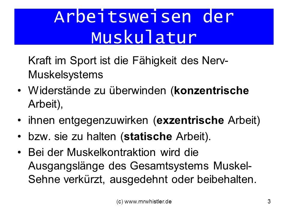 Arbeitsweisen der Muskulatur Kraft im Sport ist die Fähigkeit des Nerv- Muskelsystems Widerstände zu überwinden (konzentrische Arbeit), ihnen entgegen