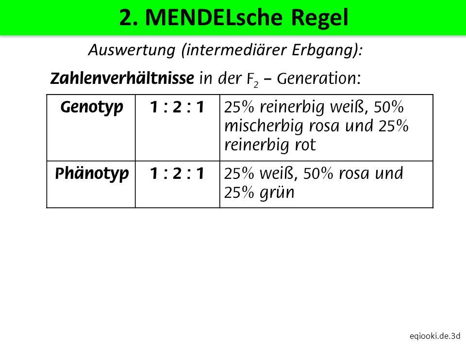 eqiooki.de.3d 2. MENDELsche Regel Auswertung (intermediärer Erbgang):