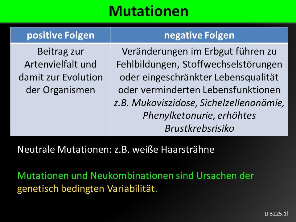 LF3225.1f Mutationen positive Folgennegative Folgen Beitrag zur Artenvielfalt und damit zur Evolution der Organismen Veränderungen im Erbgut führen zu