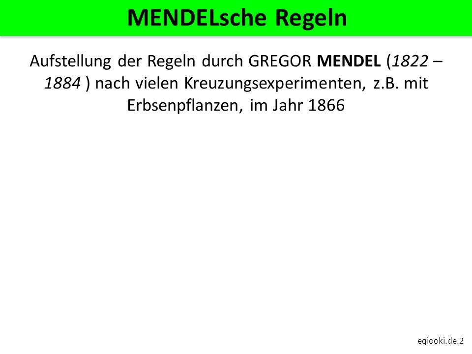 eqiooki.de.2 MENDELsche Regeln Aufstellung der Regeln durch GREGOR MENDEL (1822 – 1884 ) nach vielen Kreuzungsexperimenten, z.B. mit Erbsenpflanzen, i