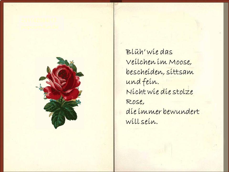 Blüh wie das Veilchen im Moose, bescheiden, sittsam und fein. Nicht wie die stolze Rose, die immer bewundert will sein. 211142584/13 popcorn-fun.de