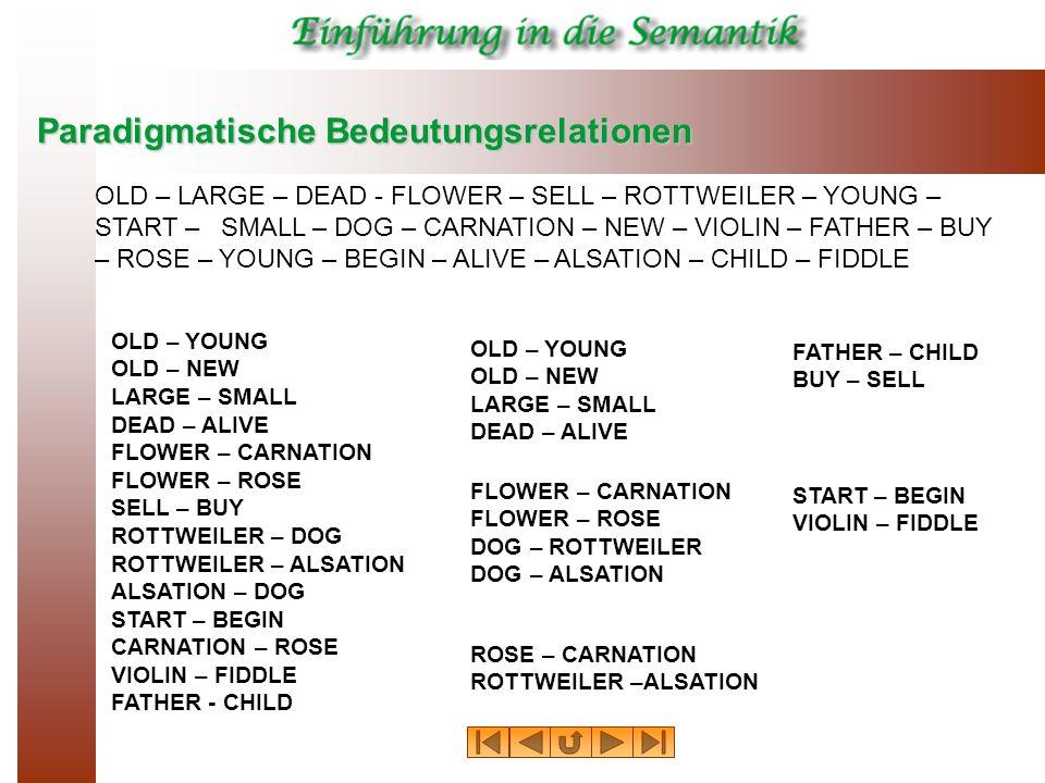 Paradigmatische Bedeutungsrelationen FLOWER – CARNATION FLOWER – ROSE DOG – ROTTWEILER DOG – ALSATION OLD – LARGE – DEAD - FLOWER – SELL – ROTTWEILER