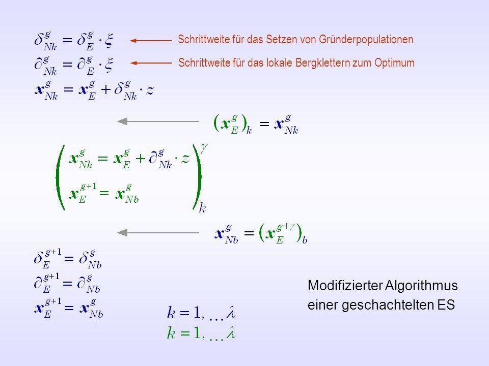 Modifizierter Algorithmus einer geschachtelten ES Schrittweite für das Setzen von Gründerpopulationen Schrittweite für das lokale Bergklettern zum Opt