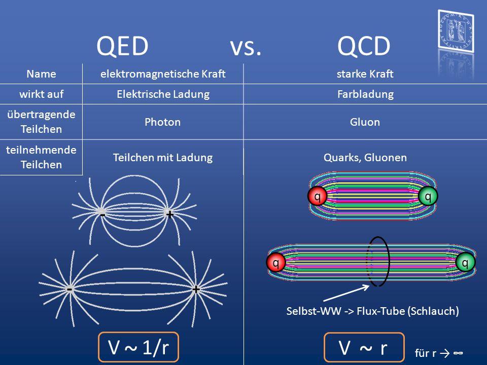 QED vs. QCD qq + - + - q q Selbst-WW -> Flux-Tube (Schlauch) V 1/r ~ V r ~ Nameelektromagnetische Kraftstarke Kraft wirkt aufElektrische LadungFarblad