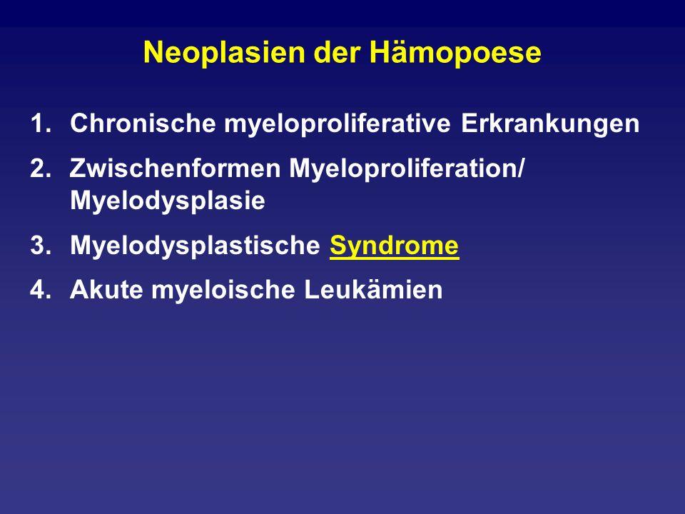 Megaloblastäre Anämie: Eine Differentialdiagnose zum MDS Der Megaloblast.