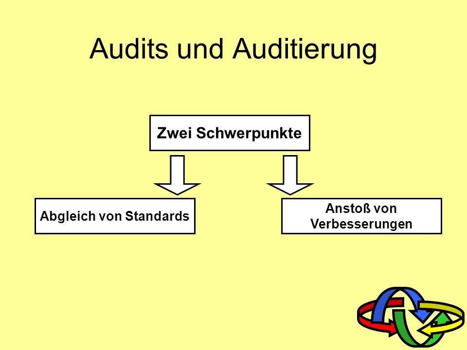 Qualitätsmanagement 9. Audits und Auditierung