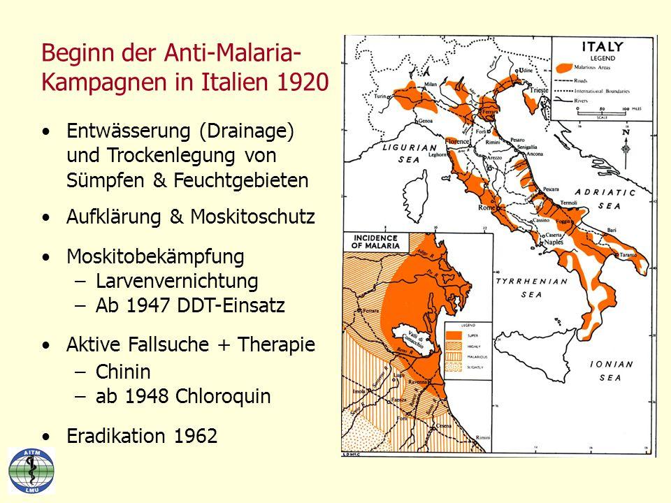 Beginn der Anti-Malaria- Kampagnen in Italien 1920 Entwässerung (Drainage) und Trockenlegung von Sümpfen & Feuchtgebieten Aufklärung & Moskitoschutz M