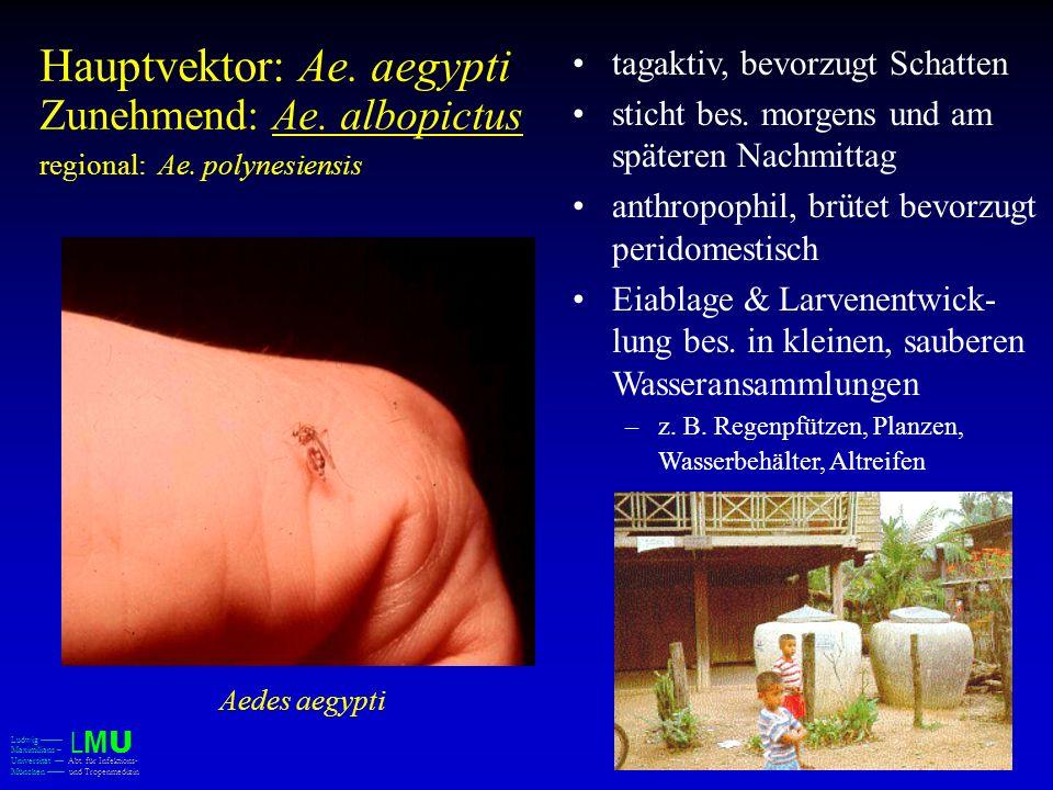 Hauptvektor: Ae. aegypti Zunehmend: Ae. albopictus regional: Ae. polynesiensis tagaktiv, bevorzugt Schatten sticht bes. morgens und am späteren Nachmi