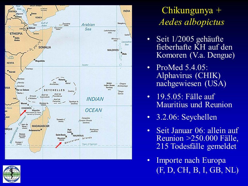 Chikungunya + Aedes albopictus Seit 1/2005 gehäufte fieberhafte KH auf den Komoren (V.a. Dengue) ProMed 5.4.05: Alphavirus (CHIK) nachgewiesen (USA) 1