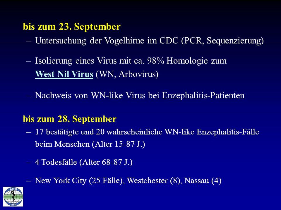 bis zum 23. September –Untersuchung der Vogelhirne im CDC (PCR, Sequenzierung) –Isolierung eines Virus mit ca. 98% Homologie zum West Nil Virus (WN, A