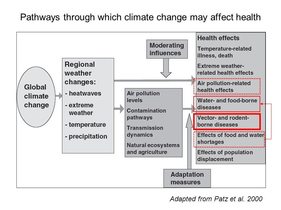 Pathways through which climate change may affect health Adapted from Patz et al. 2000