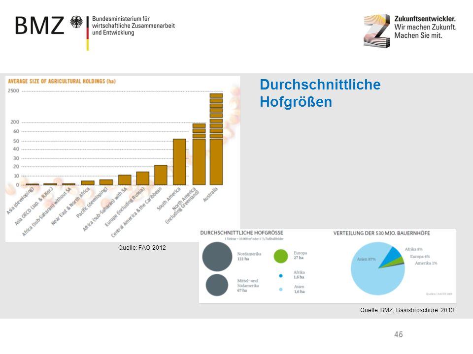 Page 45 45 Durchschnittliche Hofgrößen Quelle: FAO 2012 Quelle: BMZ, Basisbroschüre 2013