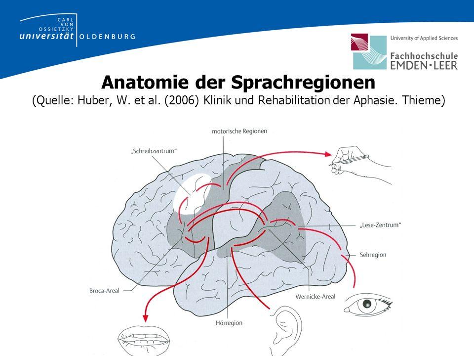 Anatomie der Sprachregionen (Quelle: Huber, W.et al.