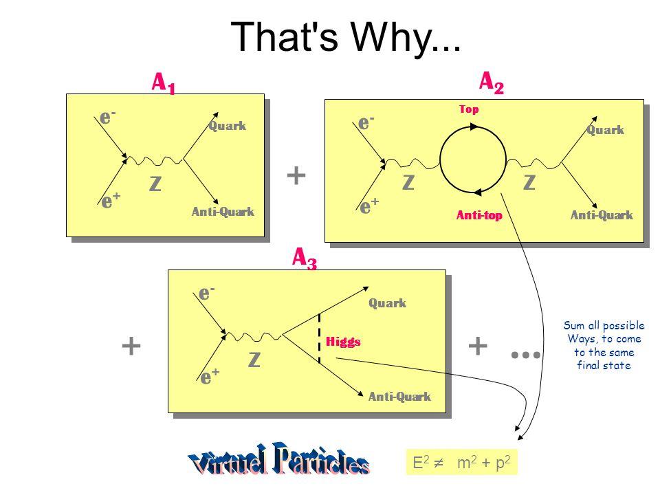 That's Why... e+e+ e-e- Quark Z Anti-Quark e+e+ e-e- Z Quark Anti-Quark Top Anti-top Z + A1A1 A2A2 e+e+ e-e- Quark Z Anti-Quark Higgs A3A3 ++... E 2 m