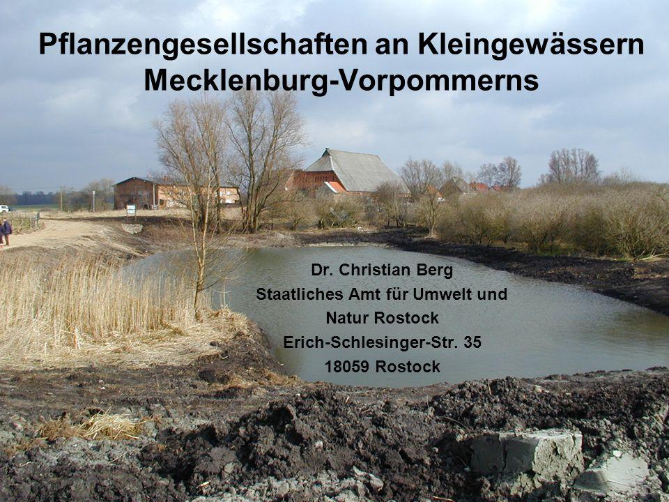 Pflanzengesellschaften an Kleingewässern Mecklenburg-Vorpommerns Dr. Christian Berg Staatliches Amt für Umwelt und Natur Rostock Erich-Schlesinger-Str