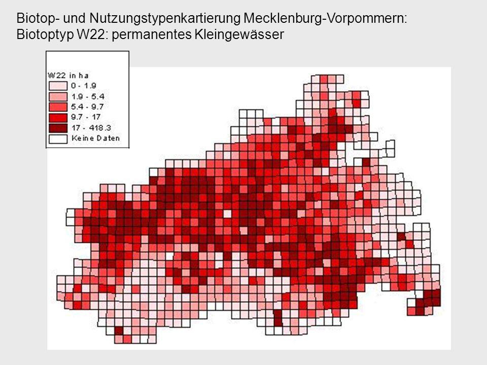 Biotop- und Nutzungstypenkartierung Mecklenburg-Vorpommern: Biotoptyp W22: permanentes Kleingewässer