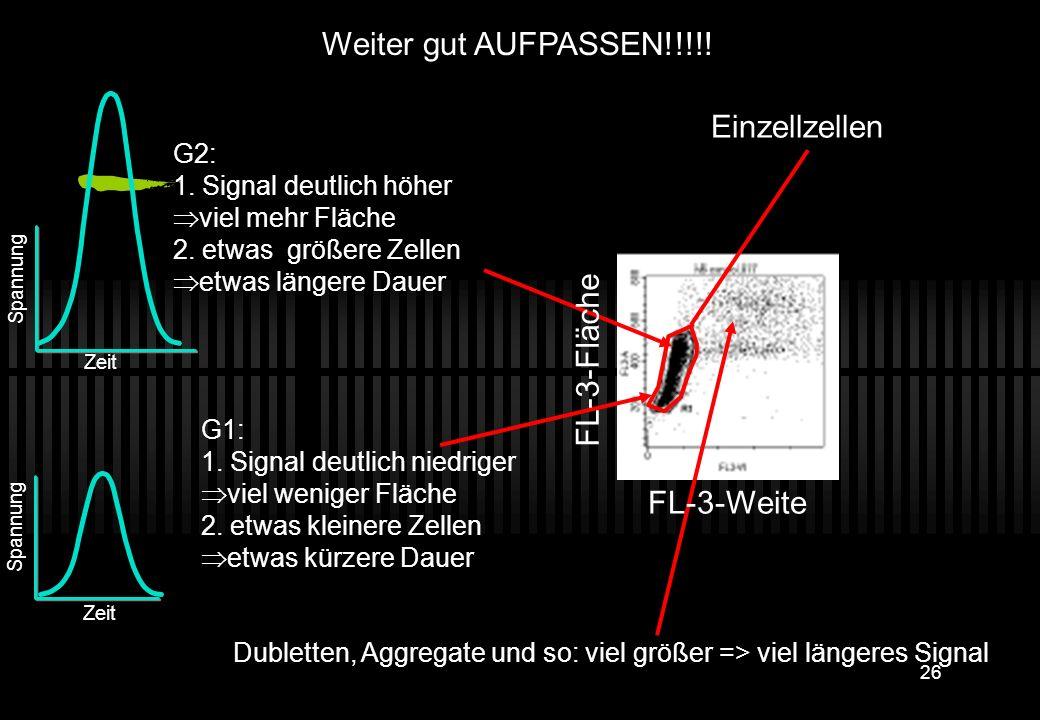 25 Zeit Spannung G2: 1. Signal deutlich höher viel mehr Fläche 2. etwas größere Zellen etwas längere Dauer Zeit Spannung G1: 1. Signal deutlich niedri