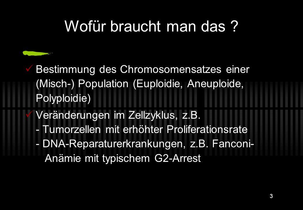 2 Durchflusszytometrie (2): DNA-Gehalt- und Zellzyklusmessungen Stephan Lobitz Klinik für Pädiatrie m.S. Onkologie und Hämatologie (CVK) +