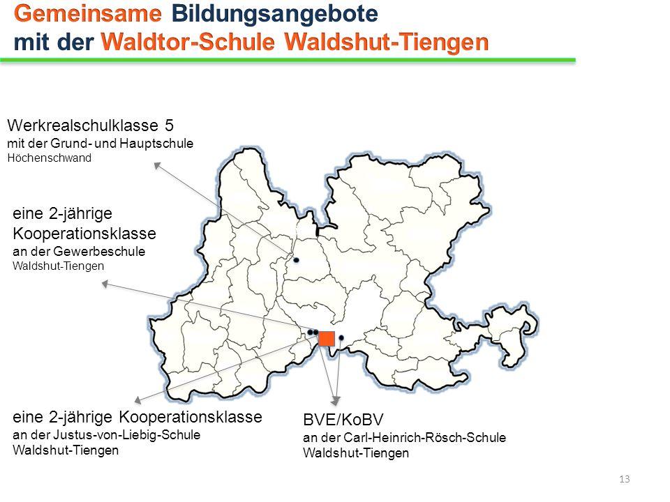eine 2-jährige Kooperationsklasse an der Gewerbeschule Waldshut-Tiengen Werkrealschulklasse 5 mit der Grund- und Hauptschule Höchenschwand BVE/KoBV an
