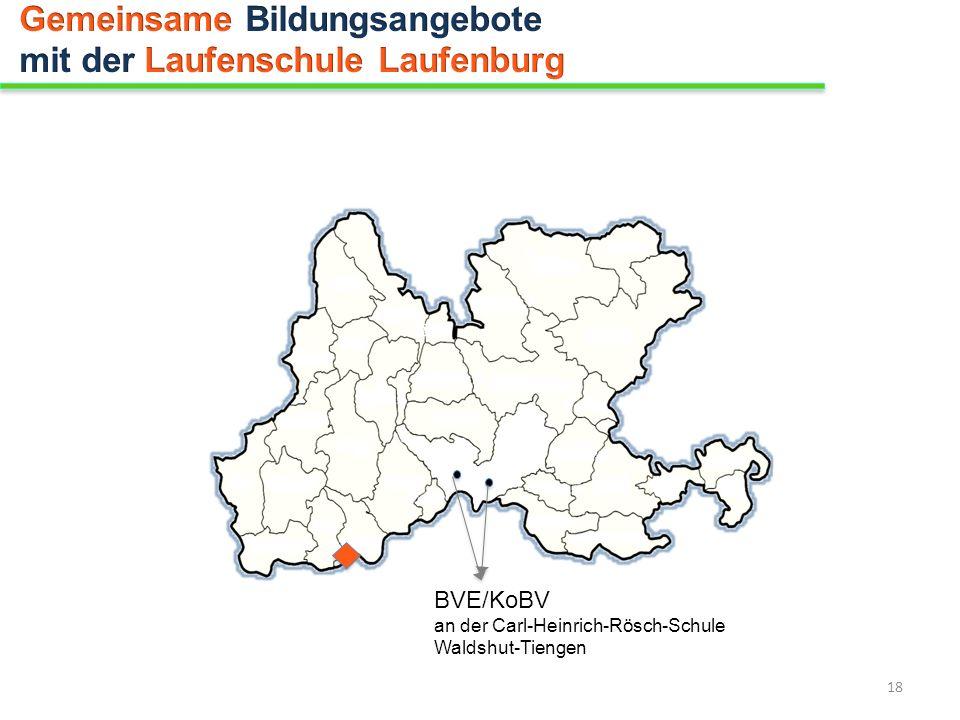 BVE/KoBV an der Carl-Heinrich-Rösch-Schule Waldshut-Tiengen 18