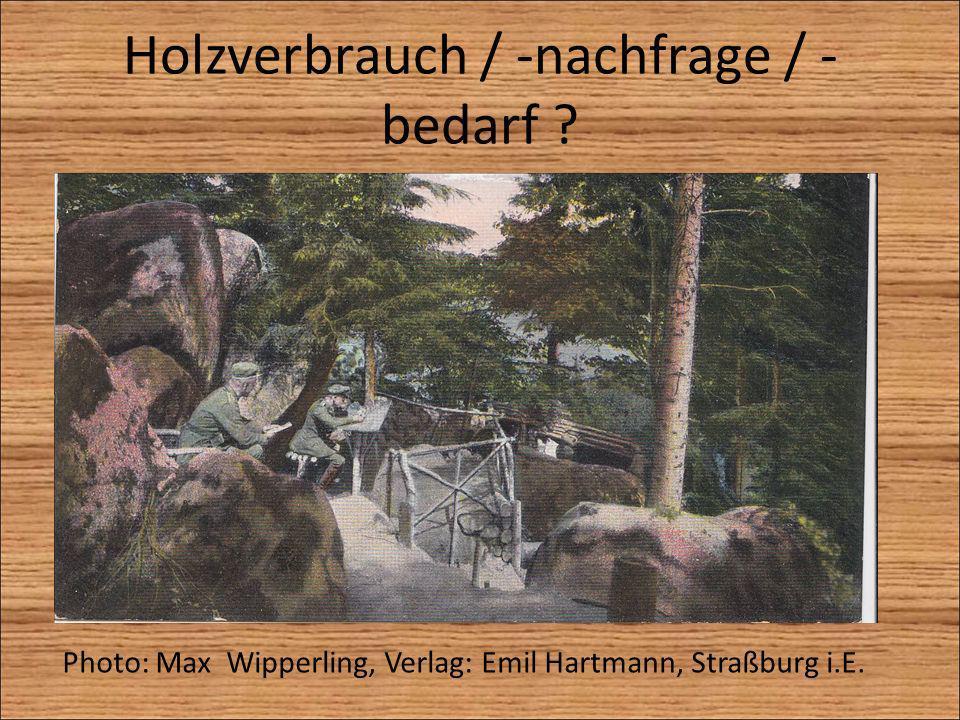 Holzverbrauch / -nachfrage / - bedarf ? Photo: Max Wipperling, Verlag: Emil Hartmann, Straßburg i.E.