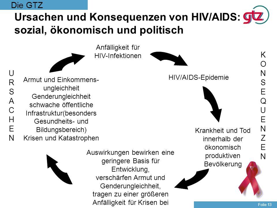 Die GTZ Folie 13 Ursachen und Konsequenzen von HIV/AIDS: sozial, ökonomisch und politisch KONSEQUENZENKONSEQUENZEN URSACHENURSACHEN HIV/AIDS-Epidemie