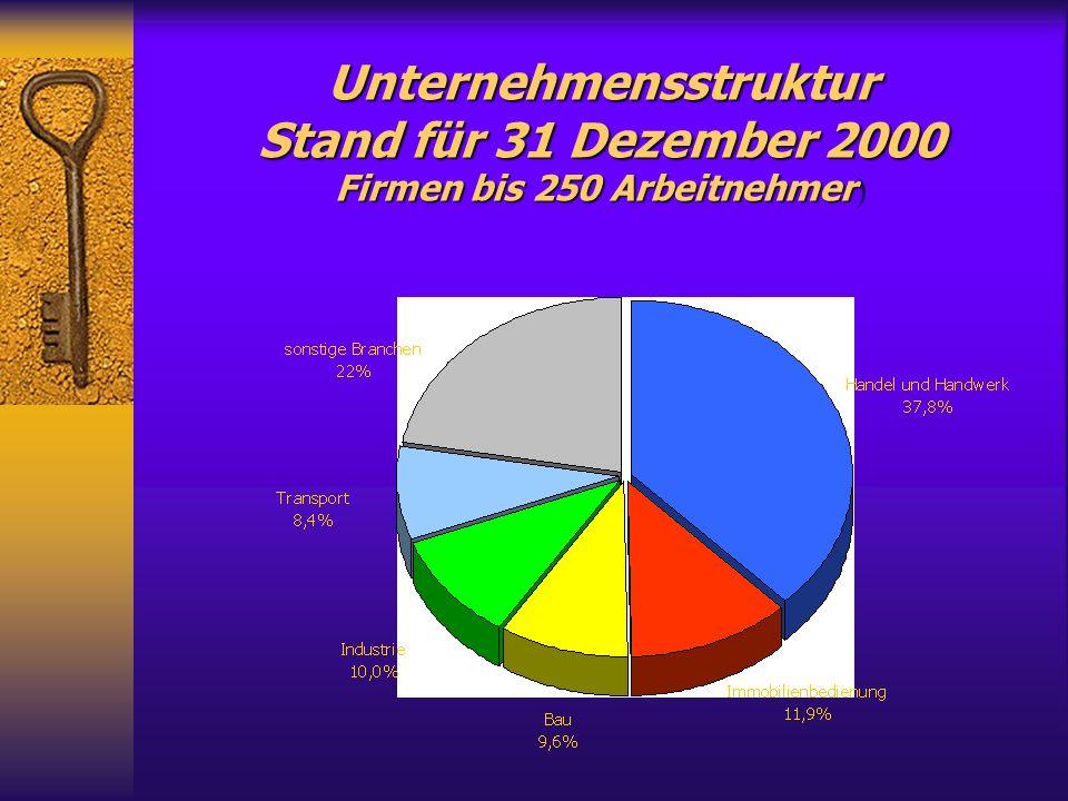 Unternehmensstruktur Stand für 31 Dezember 2000 Firmen bis 250 Arbeitnehmer Unternehmensstruktur Stand für 31 Dezember 2000 Firmen bis 250 Arbeitnehmer )