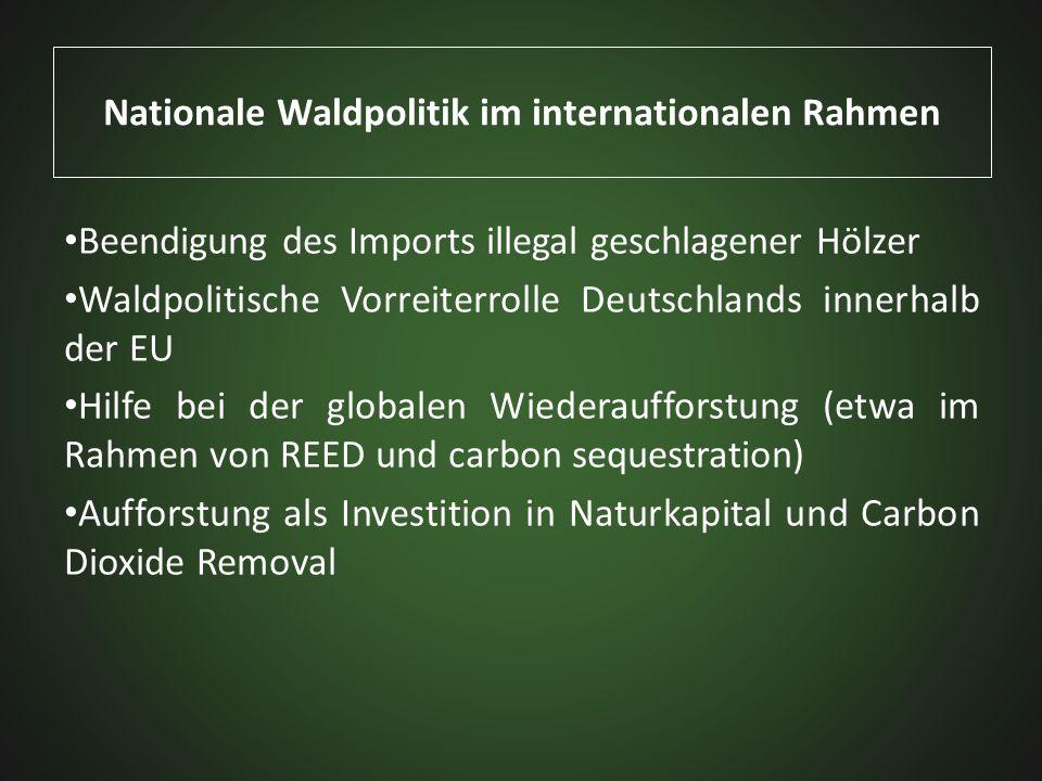 Nationale Waldpolitik im internationalen Rahmen Beendigung des Imports illegal geschlagener Hölzer Waldpolitische Vorreiterrolle Deutschlands innerhal