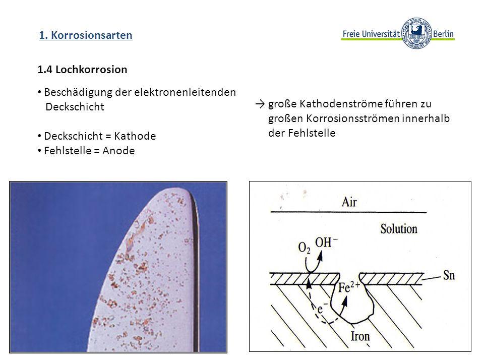 1.4 Lochkorrosion 1. Korrosionsarten Beschädigung der elektronenleitenden Deckschicht Deckschicht = Kathode Fehlstelle = Anode große Kathodenströme fü