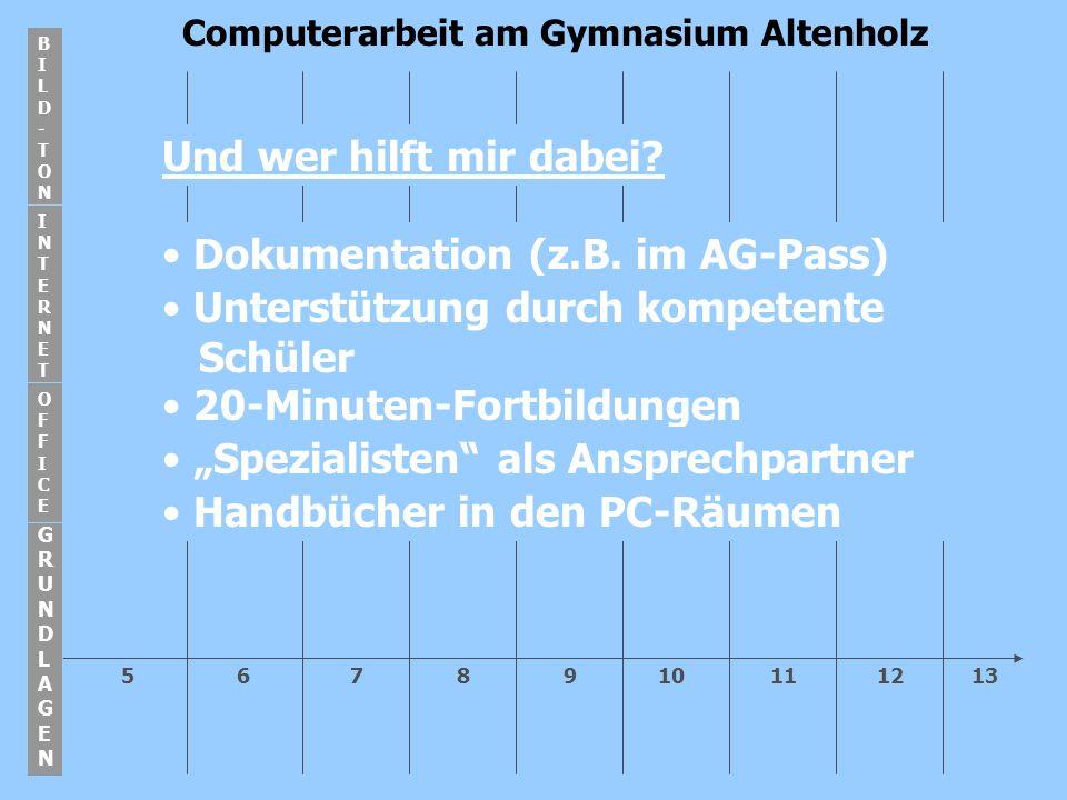 5 6 7 8 9 10 11 12 13 Computerarbeit am Gymnasium Altenholz GRUNDLAGENGRUNDLAGEN BILD-TONBILD-TON INTERNETINTERNET OFFICEOFFICE Und wer hilft mir dabei.