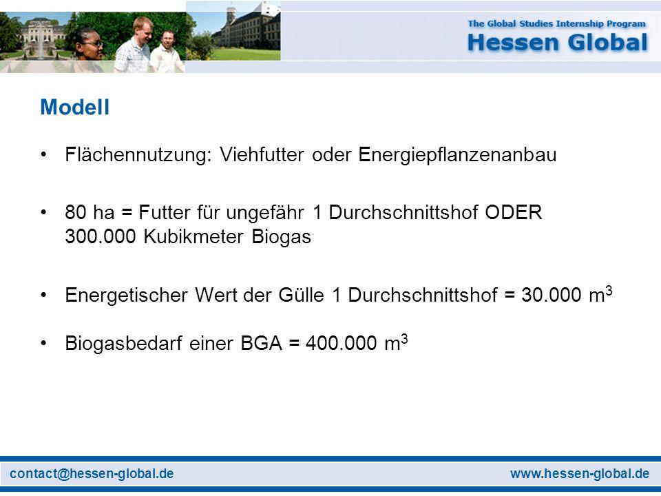 www.hessen-global.decontact@hessen-global.de Modell Flächennutzung: Viehfutter oder Energiepflanzenanbau 80 ha = Futter für ungefähr 1 Durchschnittsho