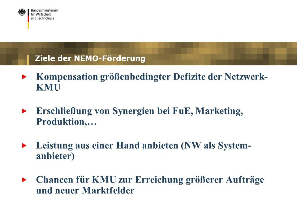 Ziele der NEMO-Förderung Kompensation größenbedingter Defizite der Netzwerk- KMU Erschließung von Synergien bei FuE, Marketing, Produktion,… Leistung