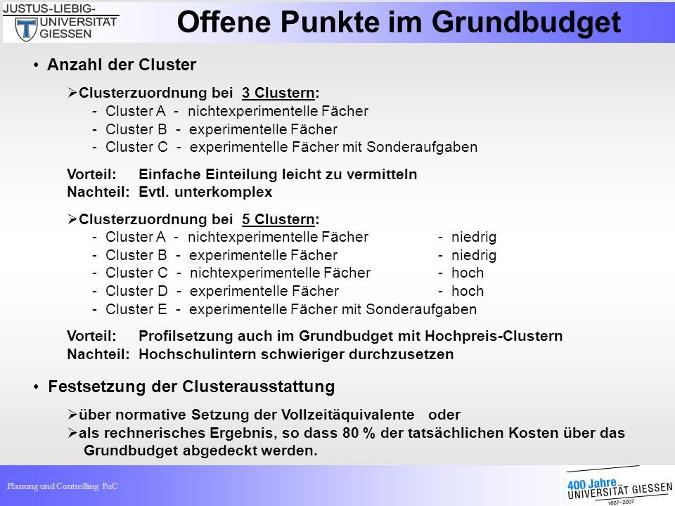 Planung und Controlling PuC Offene Punkte im Grundbudget Anzahl der Cluster Clusterzuordnung bei 3 Clustern: - Cluster A - nichtexperimentelle Fächer
