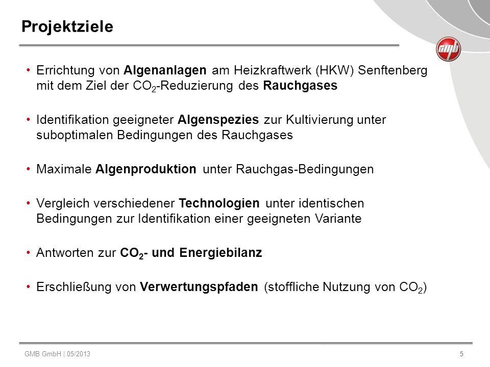 GMB GmbH | 05/20135 5 Projektziele Errichtung von Algenanlagen am Heizkraftwerk (HKW) Senftenberg mit dem Ziel der CO 2 -Reduzierung des Rauchgases Id