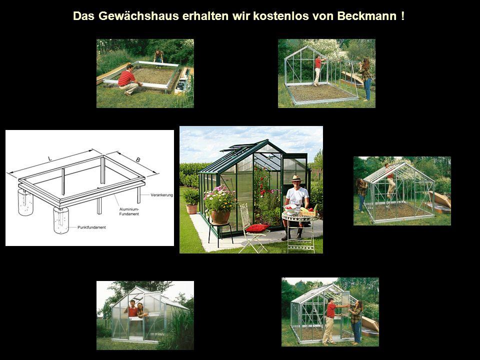 Das Gewächshaus erhalten wir kostenlos von Beckmann !