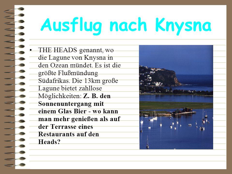 Ausflug nach Knysna THE HEADS genannt, wo die Lagune von Knysna in den Ozean mündet. Es ist die größte Flußmündung Südafrikas. Die 13km große Lagune b