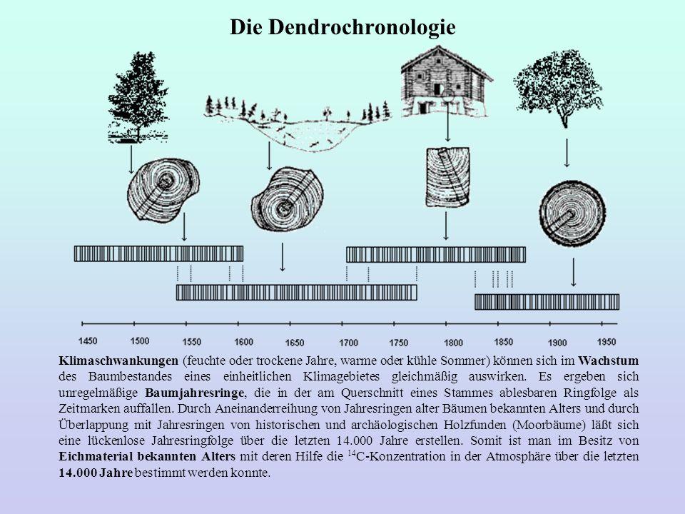 Die Dendrochronologie Klimaschwankungen (feuchte oder trockene Jahre, warme oder kühle Sommer) können sich im Wachstum des Baumbestandes eines einheit