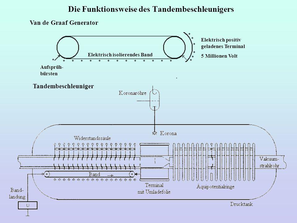 Die Funktionsweise des Tandembeschleunigers Van de Graaf Generator Tandembeschleuniger Elektrisch isolierendes Band Elektrisch positiv geladenes Termi
