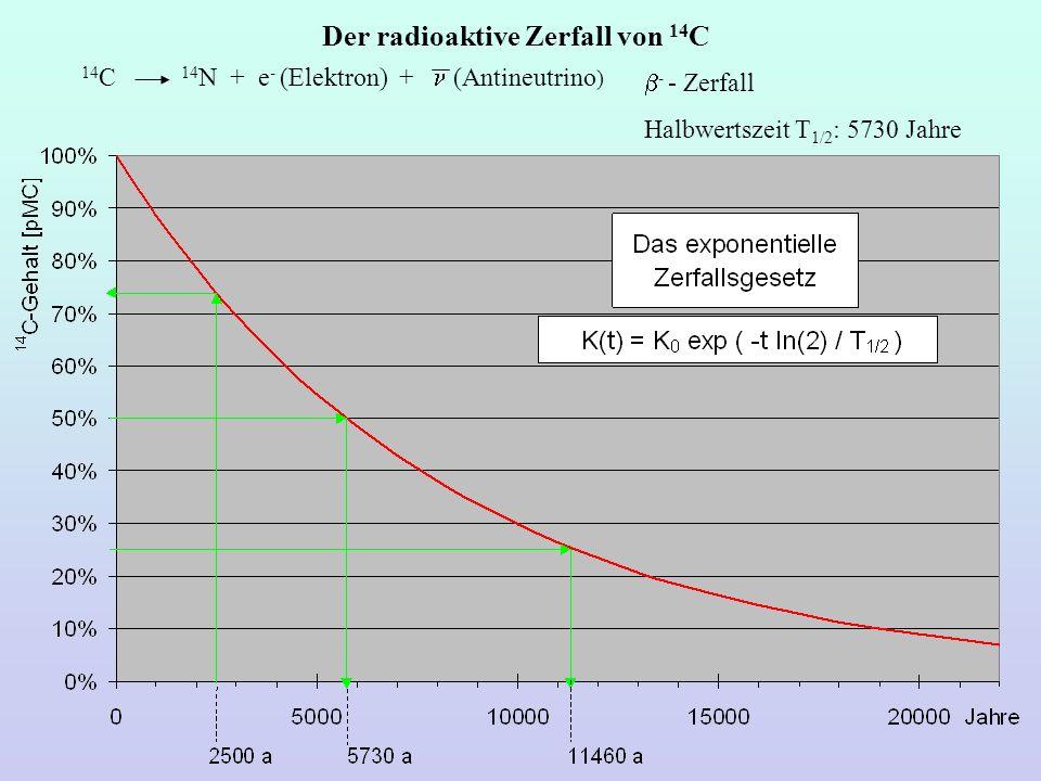 Der radioaktive Zerfall von 14 C - - Zerfall Halbwertszeit T 1/2 : 5730 Jahre 14 C 14 N + e - (Elektron) + (Antineutrino )
