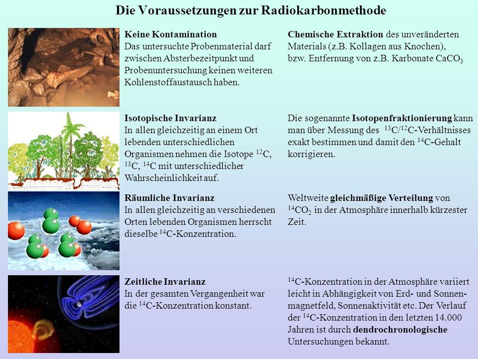 Die Voraussetzungen zur Radiokarbonmethode Chemische Extraktion des unveränderten Materials (z.B. Kollagen aus Knochen), bzw. Entfernung von z.B. Karb