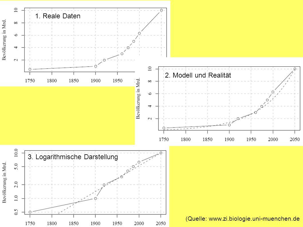 1. Reale Daten 2. Modell und Realität 3. Logarithmische Darstellung (Quelle: www.zi.biologie.uni-muenchen.de