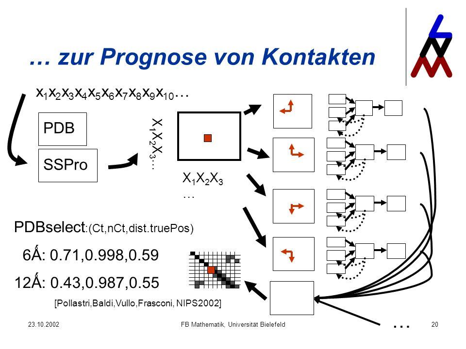 23.10.2002FB Mathematik, Universität Bielefeld20 … zur Prognose von Kontakten x 1 x 2 x 3 x 4 x 5 x 6 x 7 x 8 x 9 x 10 … PDB SSPro X1X2X3…X1X2X3… X1X2X3…X1X2X3… … [Pollastri,Baldi,Vullo,Frasconi, NIPS2002] PDBselect :(Ct,nCt,dist.truePos) 6Ǻ: 0.71,0.998,0.59 12Ǻ: 0.43,0.987,0.55