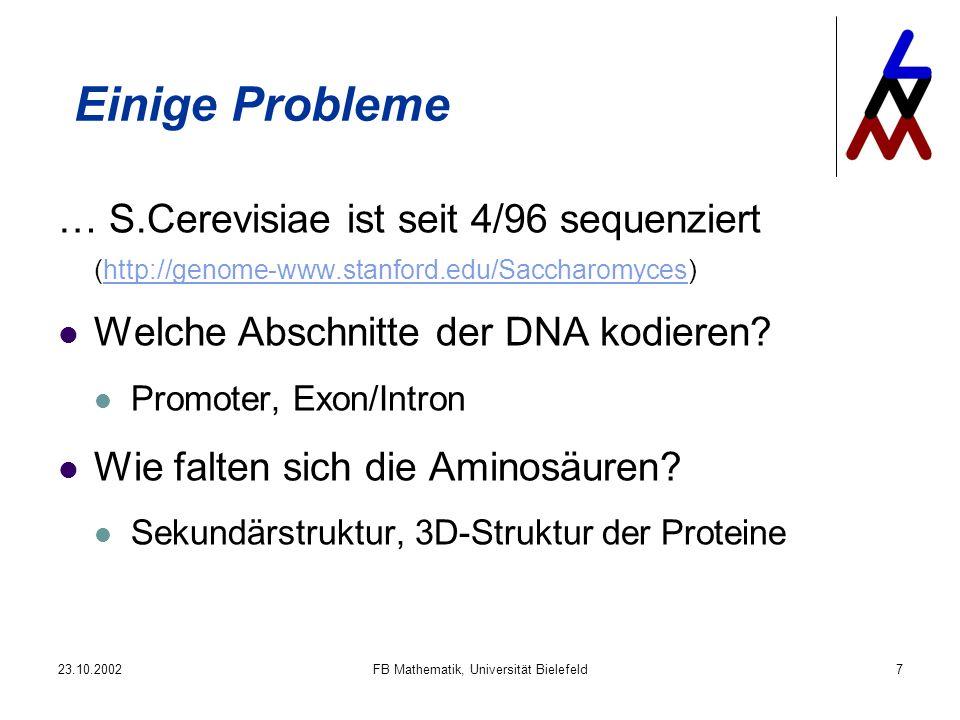 23.10.2002FB Mathematik, Universität Bielefeld7 Einige Probleme … S.Cerevisiae ist seit 4/96 sequenziert (http://genome-www.stanford.edu/Saccharomyces)http://genome-www.stanford.edu/Saccharomyces Welche Abschnitte der DNA kodieren.