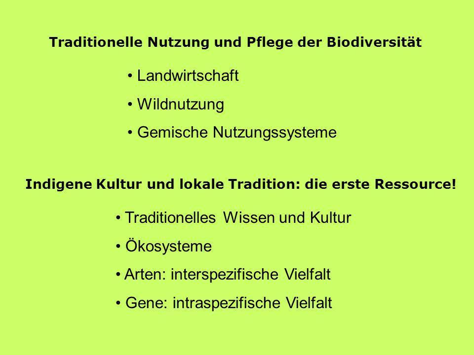 Traditionelle Nutzung und Pflege der Biodiversität Landwirtschaft Wildnutzung Gemische Nutzungssysteme Traditionelles Wissen und Kultur Ökosysteme Art