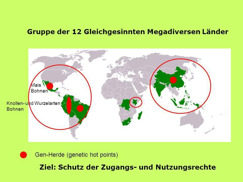 Gen-Herde (genetic hot points) Knollen- und Wurzelarten Bohnen Mais Bohnen Gruppe der 12 Gleichgesinnten Megadiversen Länder Ziel: Schutz der Zugangs-