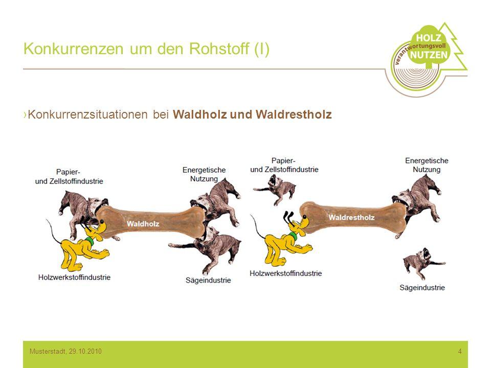 Konkurrenzen um den Rohstoff (I) Konkurrenzsituationen bei Waldholz und Waldrestholz 4Musterstadt, 29.10.2010