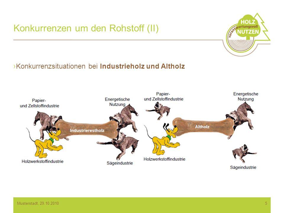 Konkurrenzen um den Rohstoff (II) Konkurrenzsituationen bei Industrieholz und Altholz 5Musterstadt, 29.10.2010